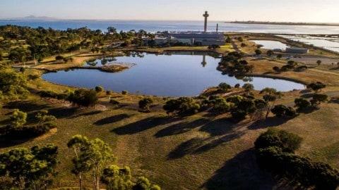 $220 million upgrade to CSIRO biosecurity facility