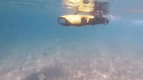 Innovative Rangerbot helps manage Gold Coast waterways