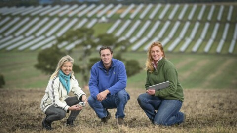 City supports smart farming technology trial
