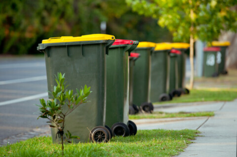 Council overhauls waste and recycling operations