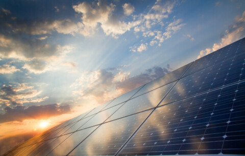 Council joins large renewable power purchase agreement