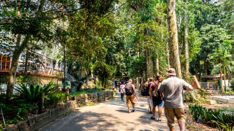 $4 million for local Sydney parks