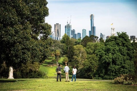Working with councils to create a city in nature