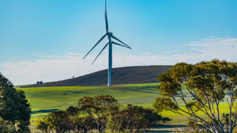 51 WA councils sign up for renewable power agreement